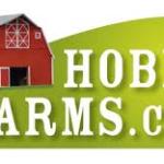 Cash Crops Sites – Top Ten