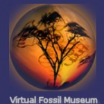 Fossils Sites – Top Ten