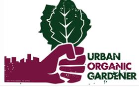 Organic 8