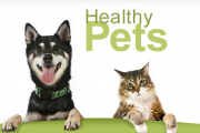 Pet Owners Sites – Top Ten