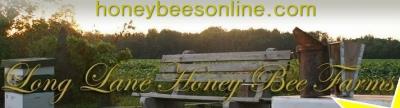 Beekeeping 9