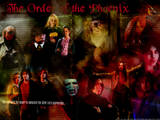 Best Harry Potter Universe Sites, Blogs and Forums