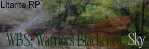 WBS; Warriors Blackened Sky