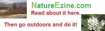 NatureEzine.com
