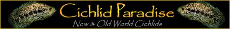 Cichlid Paradise