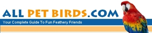 All Pet Birds