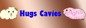 Hugs Cavies