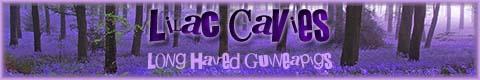 Lilac Cavies