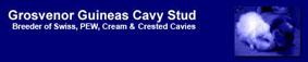 Grosvenor Guineas Caviary