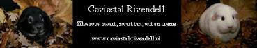 Caviastal Rivendell