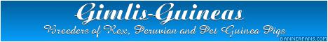 Gimli-Guineas