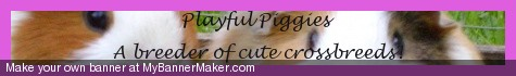 playfulpiggies.piczo.com