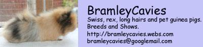 Bramley Cavies