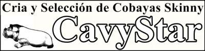 CavyStar