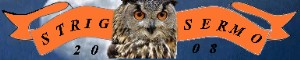 Norfolk owl and bird of prey experience