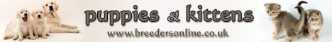BreedersOnline - Pedigree Dogs & Cats