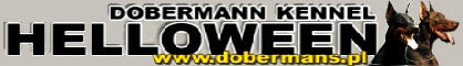 Helloween  Dobermans Kennel
