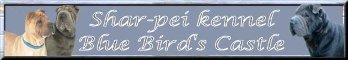 Shar-pei kennel Blue Bird's Castle