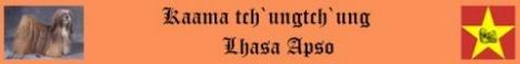 Kaama tch`ungtch`ung Lhasa Apsos