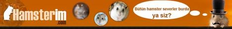 Hamsterim