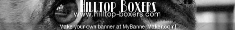 Hilltop Boxers