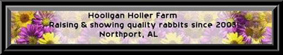 Hooligan Holler Farm