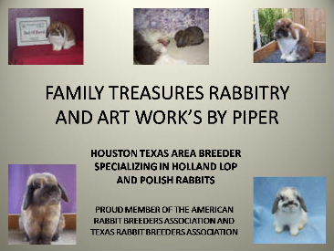Family Treasures Rabbitry and Art Work's by Piper