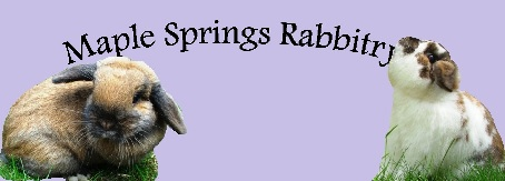 Maple Springs Rabbtiry