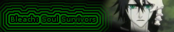 Bleach Soul Survivors