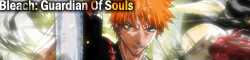 Bleach Guardian Of Souls