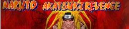 Naruto Akatsuki Revenge
