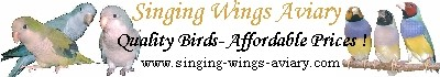 Singing Wings Aviary