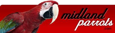 Midland Parrots