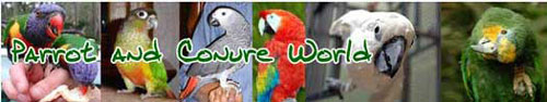 Parrot and Conure World