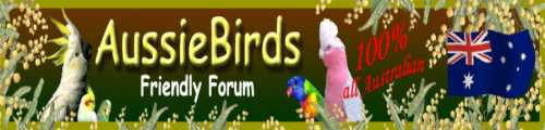 AussieBirds Friendly Forum