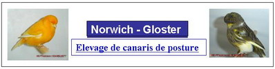 Norwich-Gloster