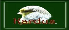 Can�rios Kardus