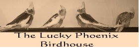 The Lucky Phoenix Birdhouse