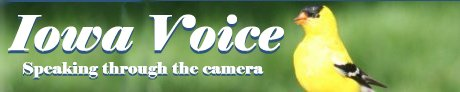Iowa Voice