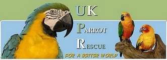 UK Parrot Rescue