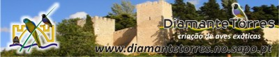 Diamante Torres - Site de ex�ticos