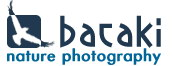 Bataki - Nature Photography