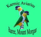 Karmic Avairies Home Mutation Parrots