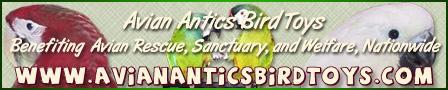 Avian Antics Bird Toys & Supplies