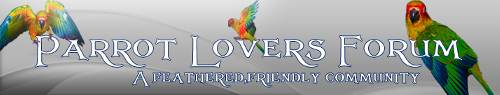 Parrot Lovers Forum & Partners