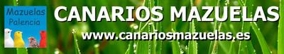Videos de Canarios Campeones de Espa�a