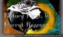 Nature First Parrot Rescue