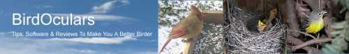 BirdOculars