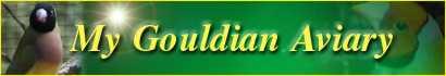 My Gouldian Aviary