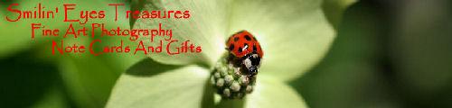 Smilin' Eyes Treasures Photography